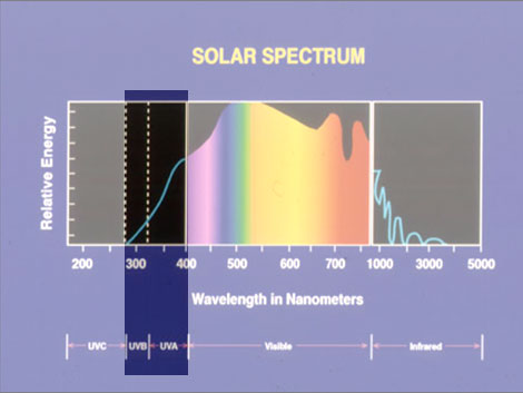 Solar Spectrum Highlighting UVA and UVB: Invisible Daylight Exposure Produces Dry Skin in Rosacea